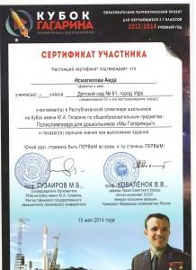 Сертификат Кубок Гагарина 1.jpeg 4