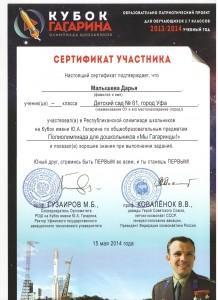 Сертификат Кубок Гагарина 1.jpeg 6