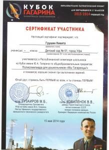 Сертификат Кубок Гагарина 12.jpeg
