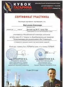 Сертификат Кубок Гагарина 13.jpeg