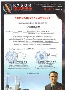 Сертификат Кубок Гагарина 8.jpeg